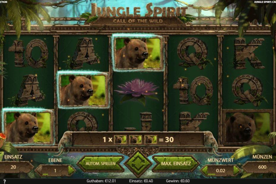 Übersicht des Jungle Spirit Spielautomatens